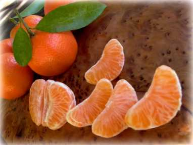 producteur orange bio corse